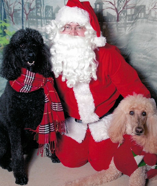 Gus & Belle with Santa 2013