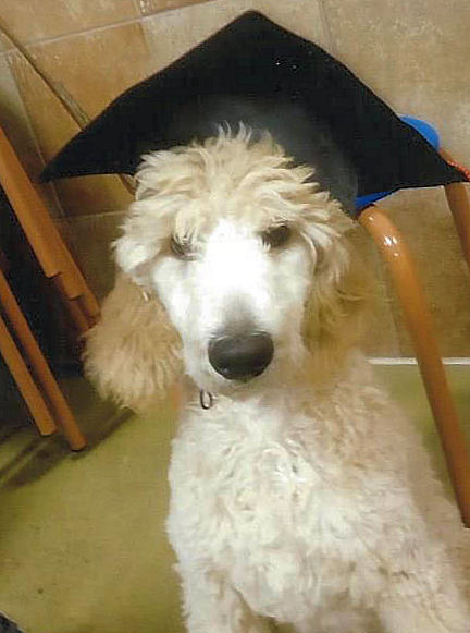 Graduation Day for Lucy
