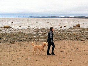 Strudel & Jan on beach walk