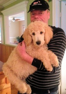 Fergus in NL - growing so big!