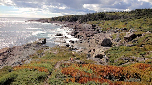 Shoal Bay on Newfoundland's East Coast Trail