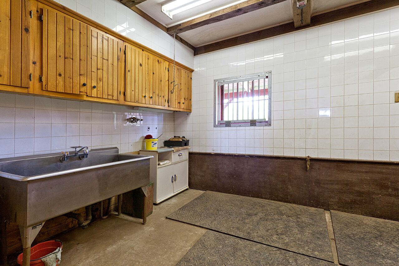 Wash Stall and Feed Room